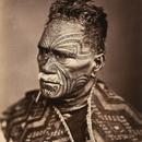 Medium maori